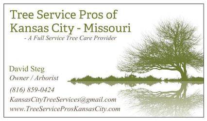Tree Service Pros Kansas City, MO